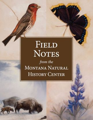 Picture of Field Notes from the Montana Natural History Center
