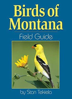 Picture of Birds of Montana Field Guide