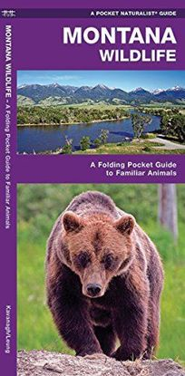 Picture of Montana Wildlife: A Folding Pocket Guide to Familiar Animals (A Pocket Naturalist Guide)