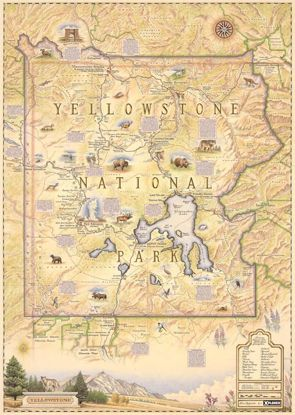 Picture of Map: Xplorer Yellowstone Map