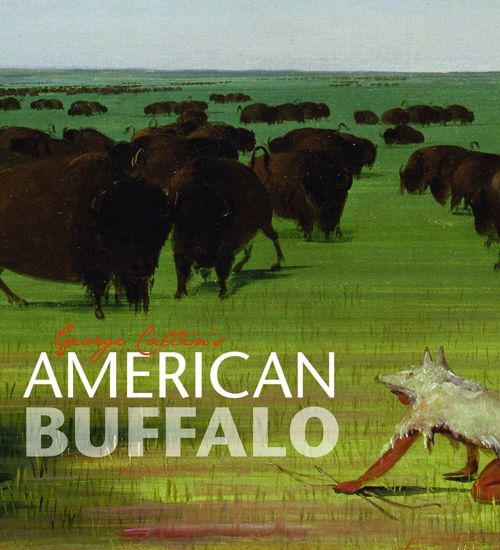 Picture of George Catlin's American Buffalo