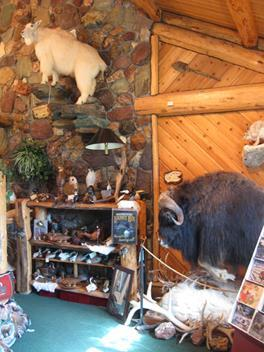 Hi Country Trading Post Made In Montana
