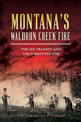 Picture of Montana's Waldron Creek Fire