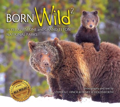 Picture of Born Wild 2 in Yellowstone and Grand Teton National Parks