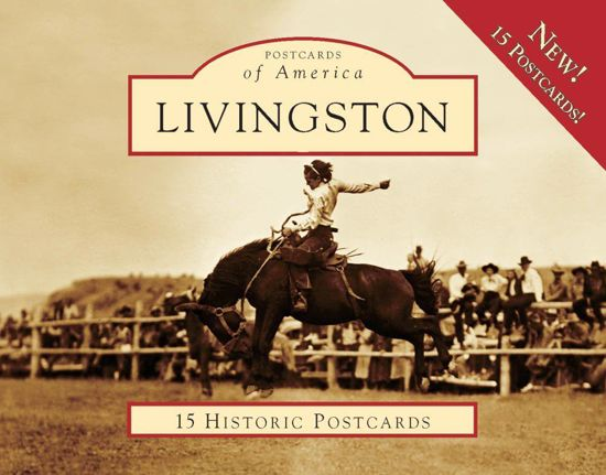 Picture of Postcards of America: Livingston