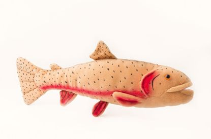 """Picture of Stuffed Toy - Cutthroat Trout 10"""""""
